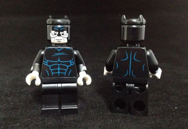 Wildcat Custom Minifigure